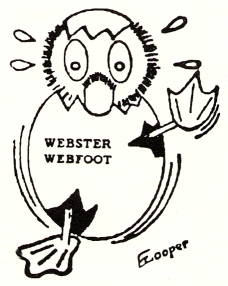 websterwebfoot